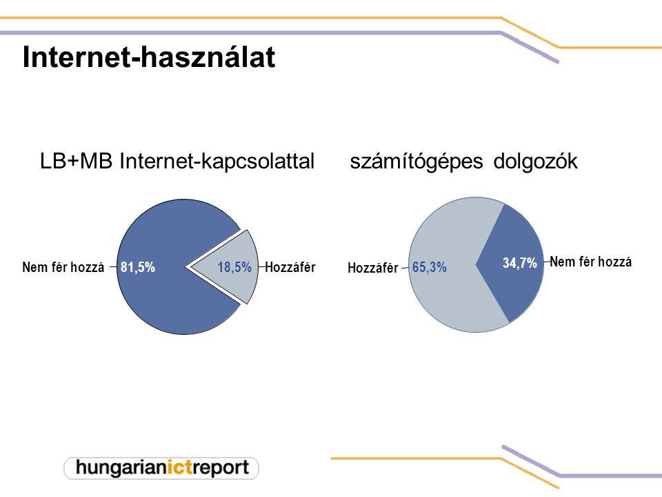 HozzáférNem fér hozzá18,5%81,5% Hozzáfér Nem fér hozzá 65,3% 34,7% Internet-használat LB+MB Internet-kapcsolattalszámítógépes dolgozók