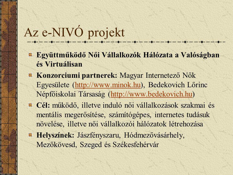 Az e-NIVÓ projekt Együttműködő Női Vállalkozók Hálózata a Valóságban és Virtuálisan Konzorciumi partnerek: Magyar Internetező Nők Egyesülete (http://w