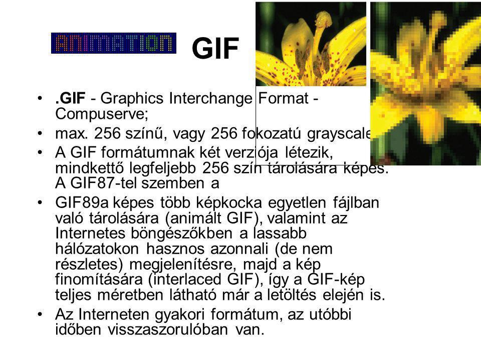 GIF •.GIF - Graphics Interchange Format - Compuserve; •max. 256 színű, vagy 256 fokozatú grayscale. •A GIF formátumnak két verziója létezik, mindkettő