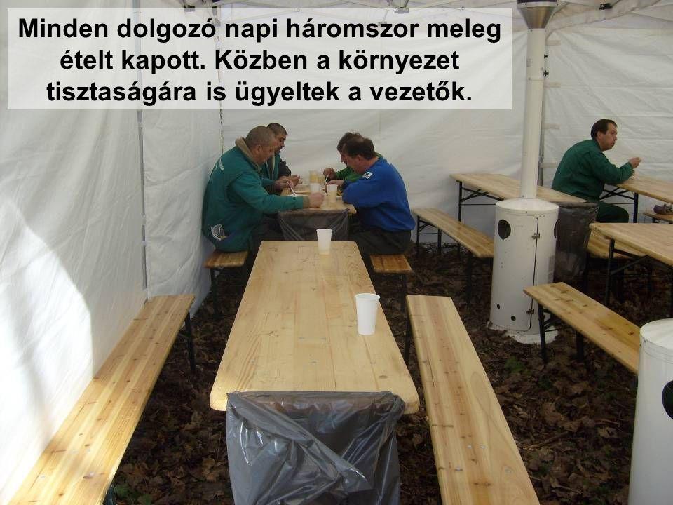 Minden dolgozó napi háromszor meleg ételt kapott. Közben a környezet tisztaságára is ügyeltek a vezetők.