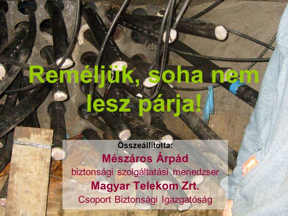 Reméljük, soha nem lesz párja! Összeállította: Mészáros Árpád biztonsági szolgáltatási menedzser Magyar Telekom Zrt. Csoport Biztonsági Igazgatóság