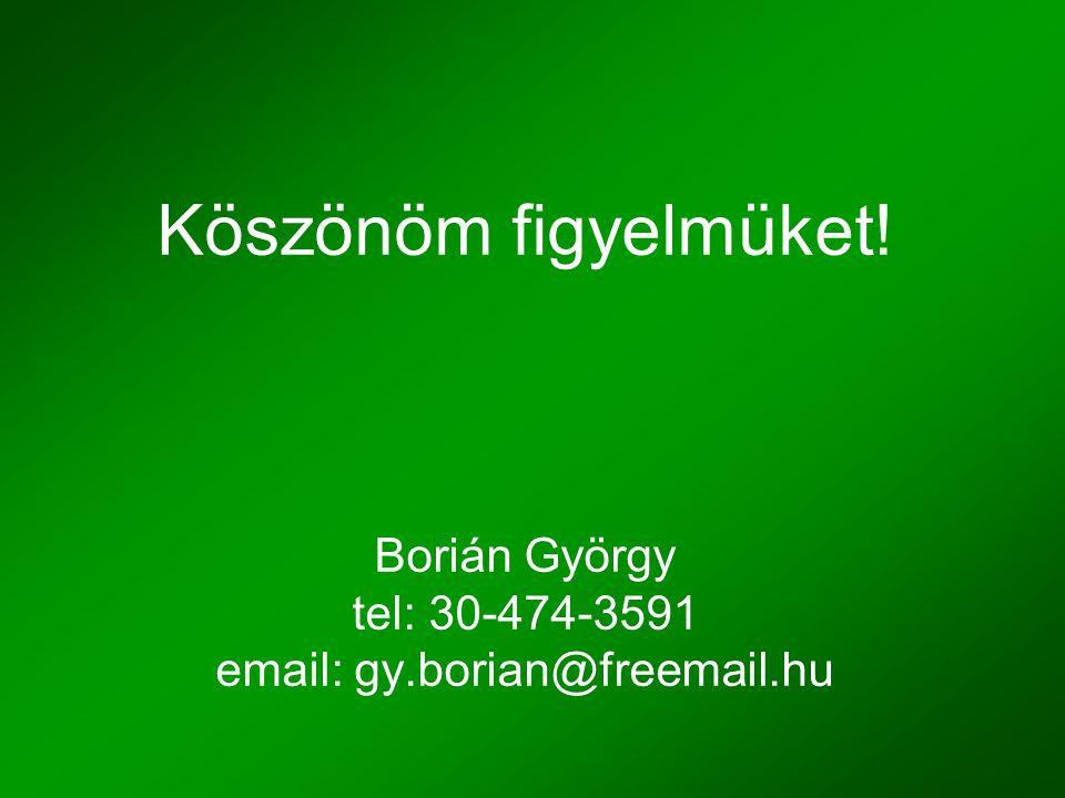 Köszönöm figyelmüket! Borián György tel: 30-474-3591 email: gy.borian@freemail.hu