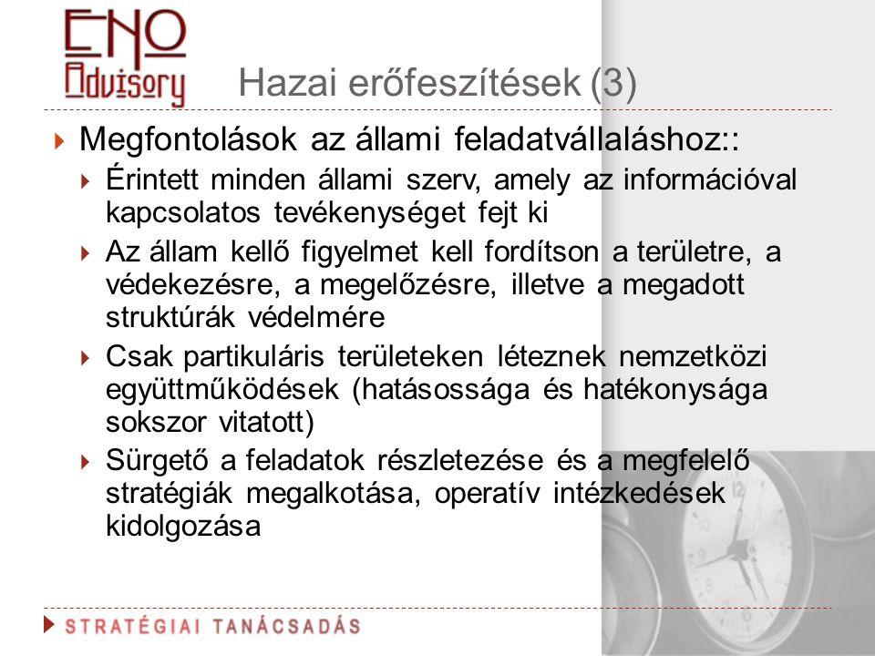 Hazai erőfeszítések (3)  Megfontolások az állami feladatvállaláshoz::  Érintett minden állami szerv, amely az információval kapcsolatos tevékenysége