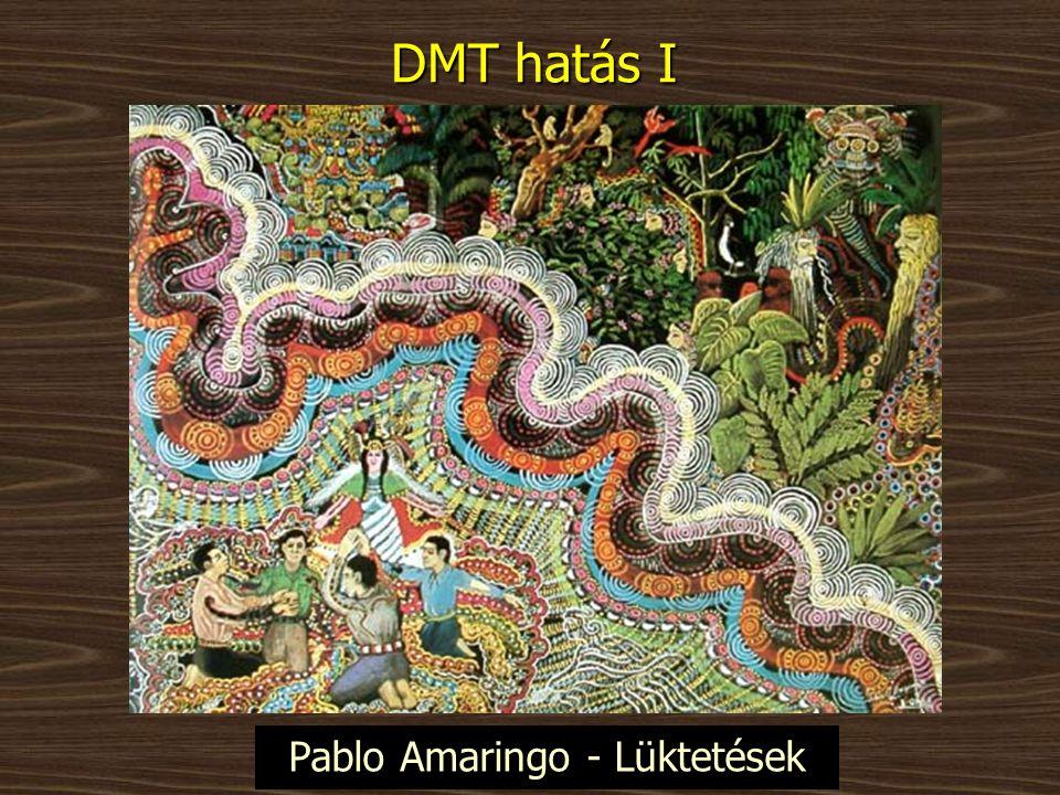 DMT hatás I Pablo Amaringo - Lüktetések