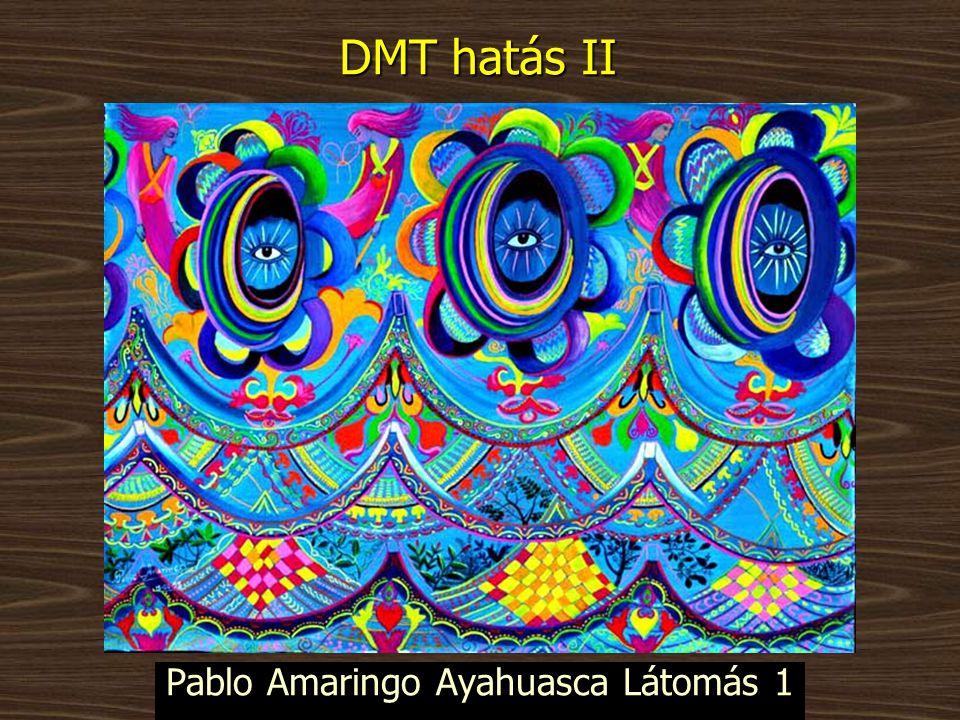 Pablo Amaringo Ayahuasca Látomás 1 DMT hatás II