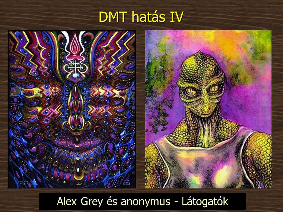 DMT hatás IV Alex Grey és anonymus - Látogatók
