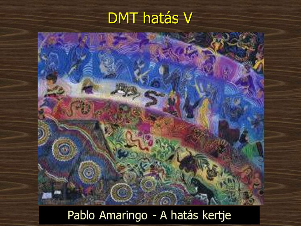 DMT hatás V Pablo Amaringo - A hatás kertje