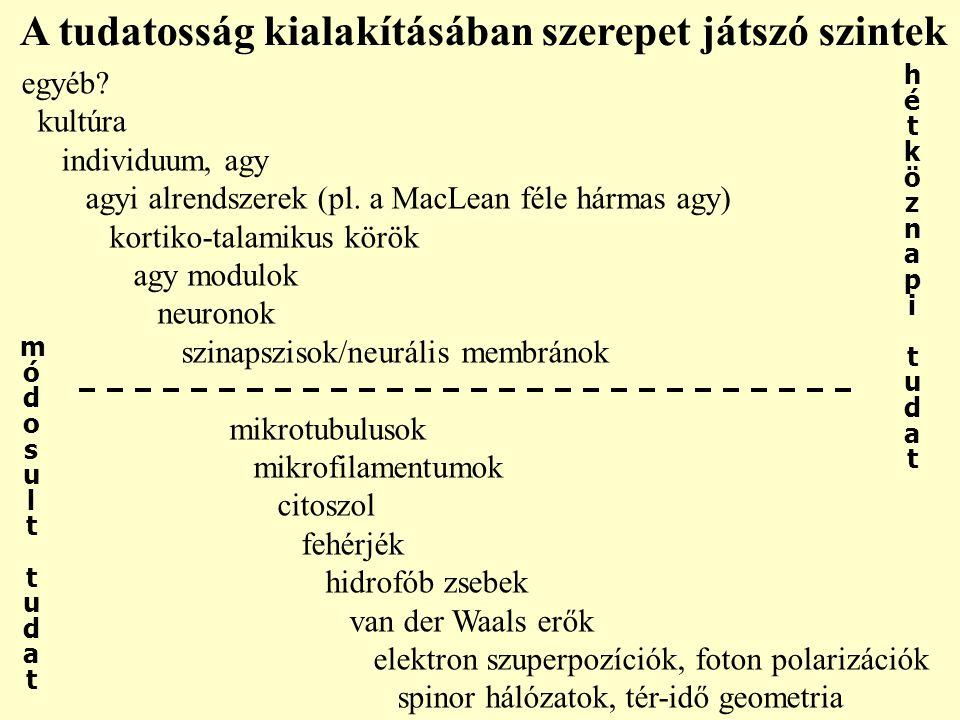 egyéb? kultúra individuum, agy agyi alrendszerek (pl. a MacLean féle hármas agy) kortiko-talamikus körök agy modulok neuronok szinapszisok/neurális me