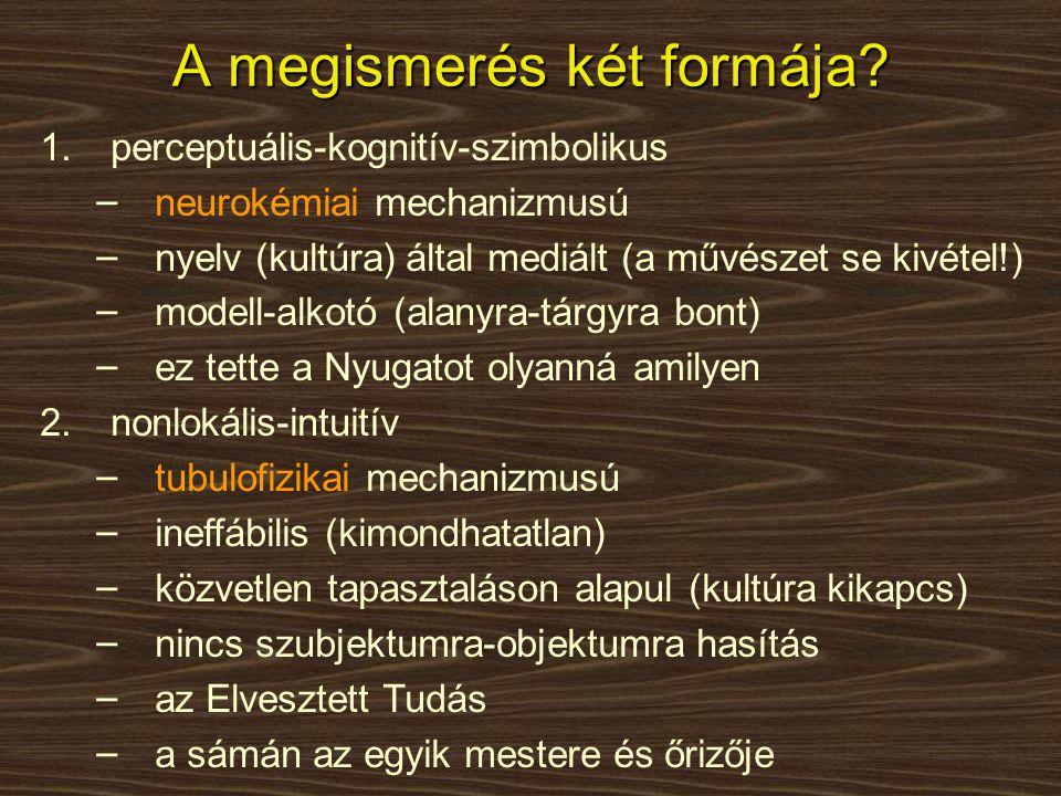 A megismerés két formája? 1.perceptuális-kognitív-szimbolikus − neurokémiai mechanizmusú − nyelv (kultúra) által mediált (a művészet se kivétel!) − mo