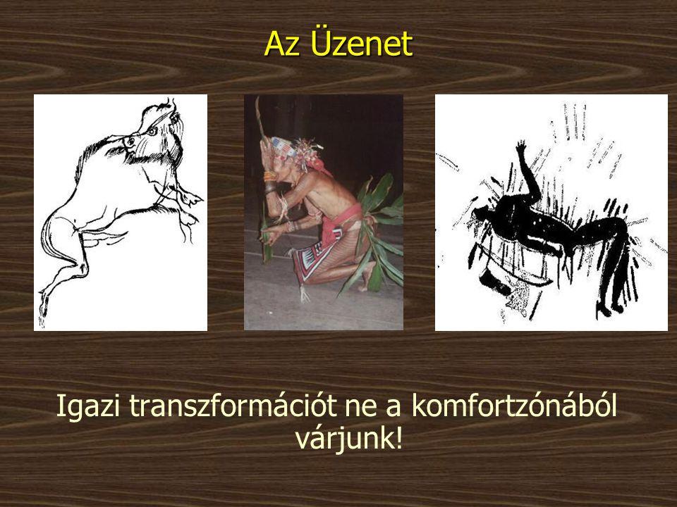 Az Üzenet Igazi transzformációt ne a komfortzónából várjunk!