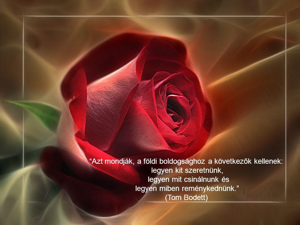 Ha az ember szeret valakit, mindent könnyűnek talál.