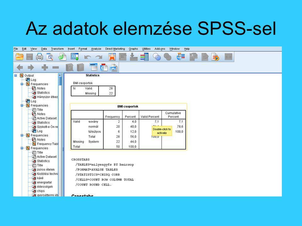 Az adatok elemzése SPSS-sel