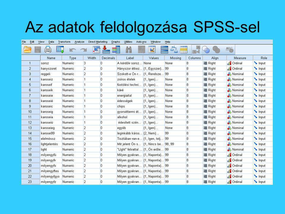 Az adatok feldolgozása SPSS-sel