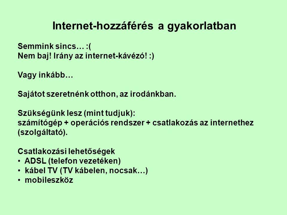 Internet-hozzáférés a gyakorlatban Semmink sincs… :( Nem baj.