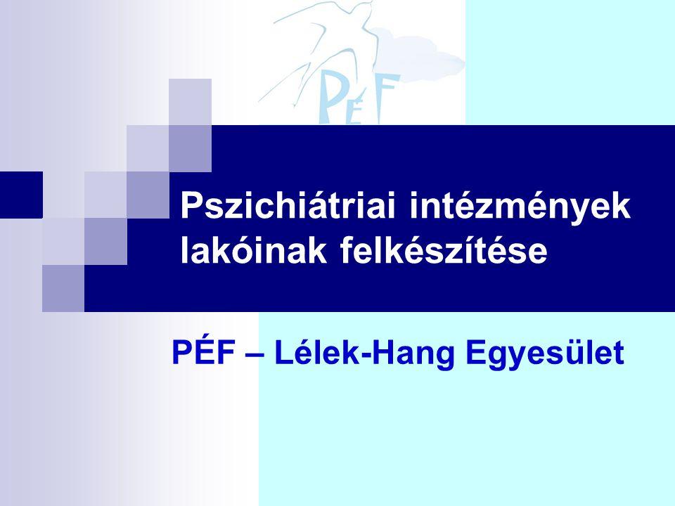 Pszichiátriai intézmények lakóinak felkészítése PÉF – Lélek-Hang Egyesület