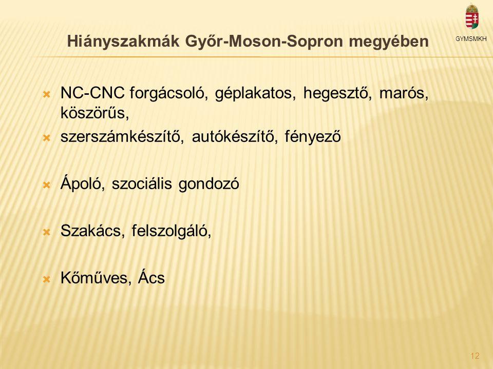 Hiányszakmák Győr-Moson-Sopron megyében GYMSMKH  NC-CNC forgácsoló, géplakatos, hegesztő, marós, köszörűs,  szerszámkészítő, autókészítő, fényező  Ápoló, szociális gondozó  Szakács, felszolgáló,  Kőműves, Ács 12