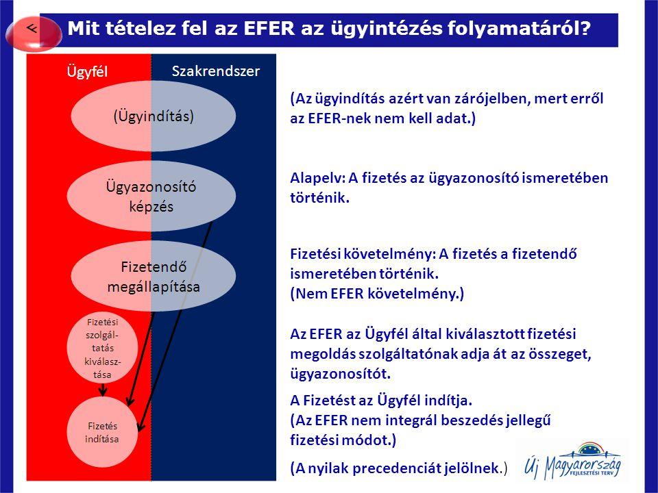 Mit tételez fel az EFER az ügyintézés folyamatáról? 12