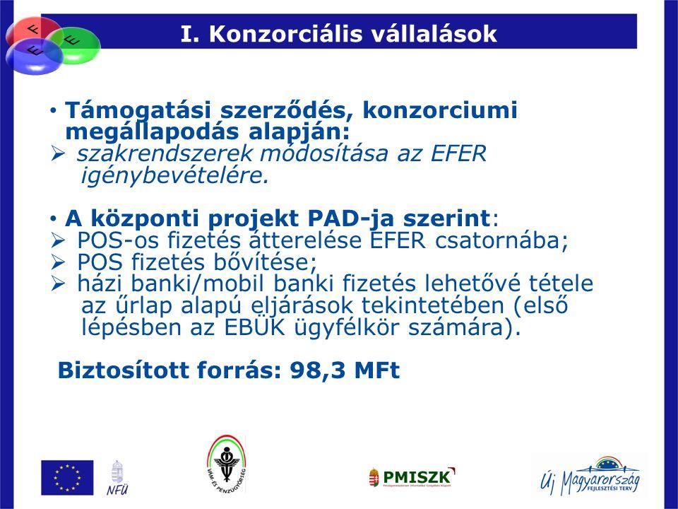 90 I. Konzorciális vállalások • Támogatási szerződés, konzorciumi megállapodás alapján:  szakrendszerek módosítása az EFER igénybevételére. • A közpo