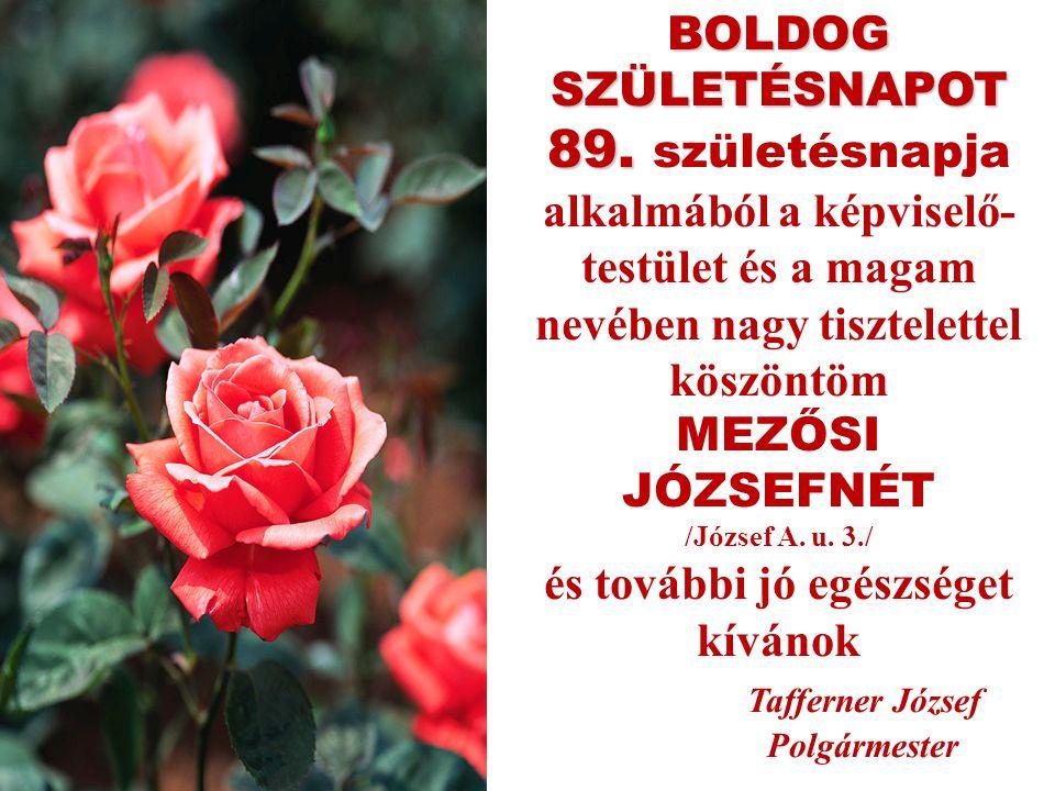 BOLDOG SZÜLETÉSNAPOT 89. 89.