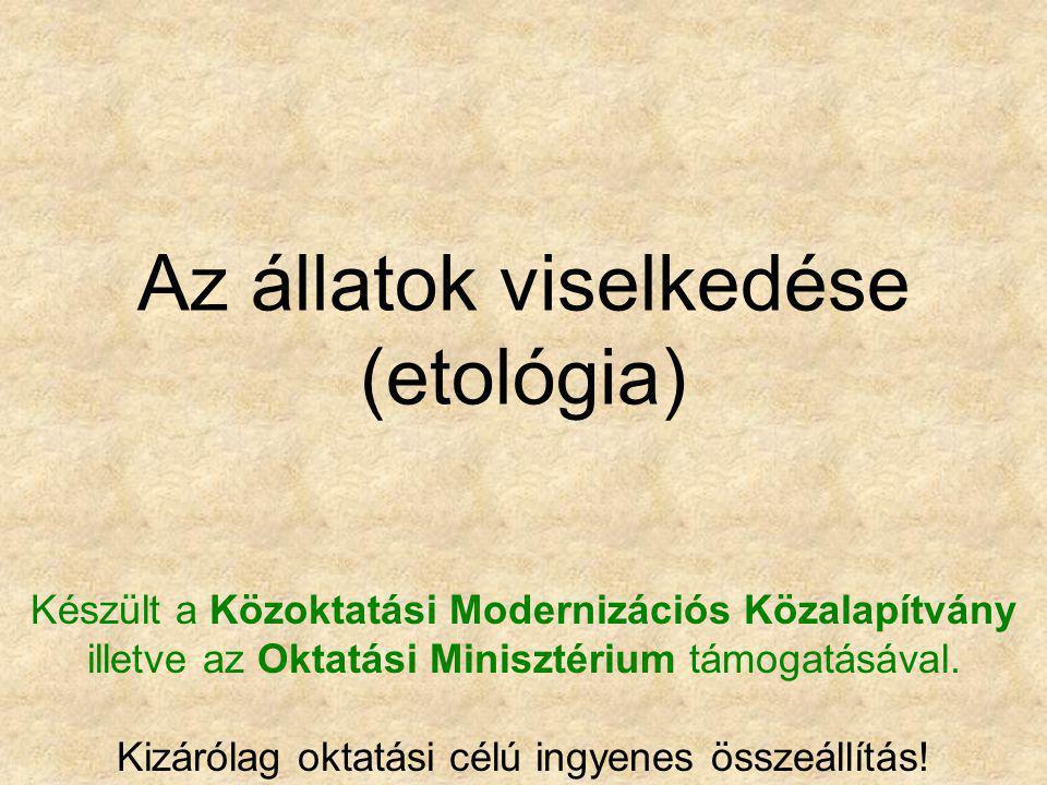 Az állatok viselkedése (etológia) Készült a Közoktatási Modernizációs Közalapítvány illetve az Oktatási Minisztérium támogatásával. Kizárólag oktatási