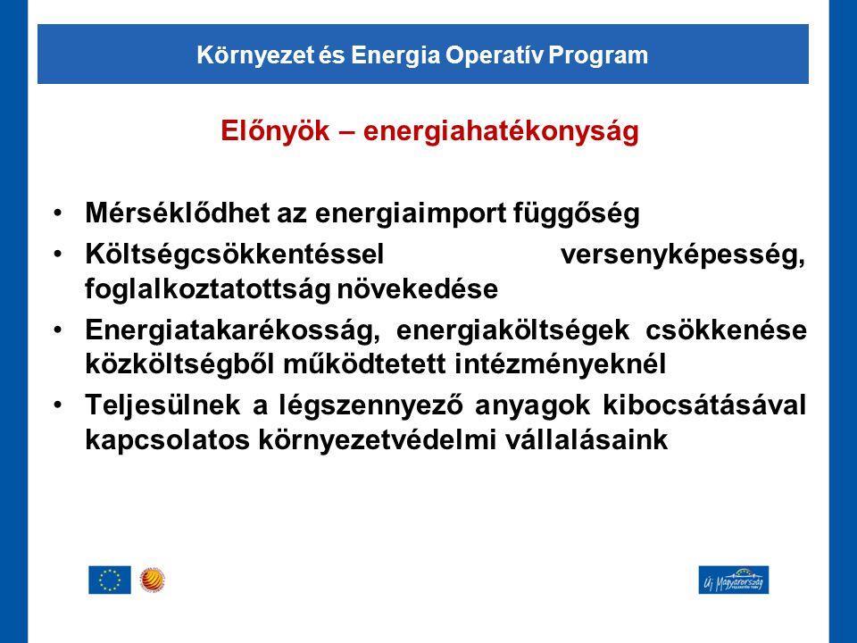 Előnyök – energiahatékonyság •Mérséklődhet az energiaimport függőség •Költségcsökkentéssel versenyképesség, foglalkoztatottság növekedése •Energiataka