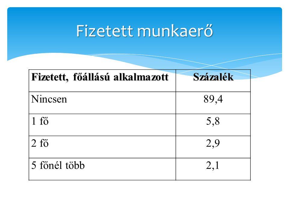 Fizetett munkaerő Fizetett, főállású alkalmazott Százalék Nincsen89,4 1 fő5,8 2 fő2,9 5 főnél több2,1