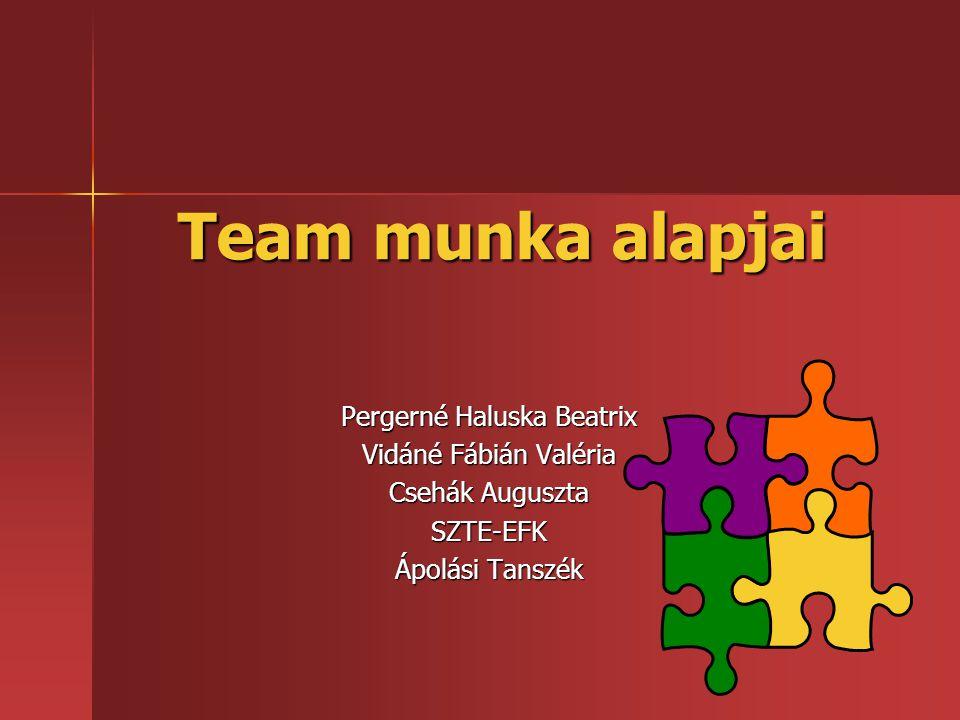 Team munka alapjai Pergerné Haluska Beatrix Vidáné Fábián Valéria Csehák Auguszta SZTE-EFK Ápolási Tanszék