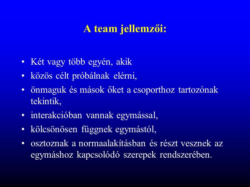 A team fő típusai •Állandó formális csoport : tagok személye nem változik, rendszeresen üléseznek, meghatározott feladatkörökben folyamatosan tevékenykednek (pl.