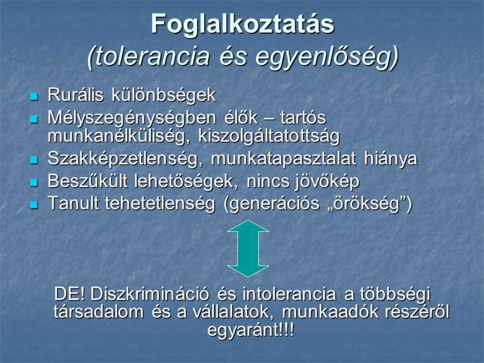 Foglalkoztatás (tolerancia és egyenlőség)  Rurális különbségek  Mélyszegénységben élők – tartós munkanélküliség, kiszolgáltatottság  Szakképzetlens