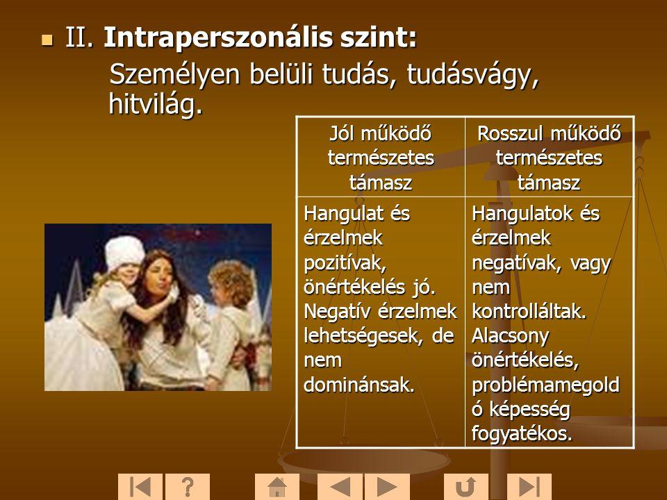 IIIII.Intraperszonális szint: Személyen belüli tudás, tudásvágy, hitvilág.