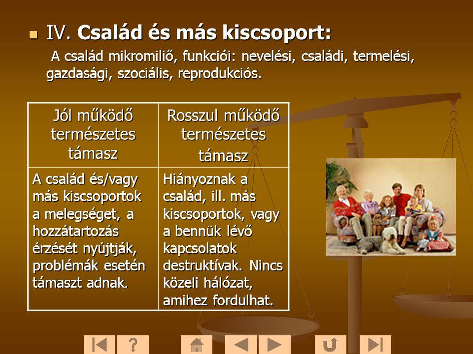  IV. Család és más kiscsoport: A család mikromiliő, funkciói: nevelési, családi, termelési, gazdasági, szociális, reprodukciós. A család mikromiliő,