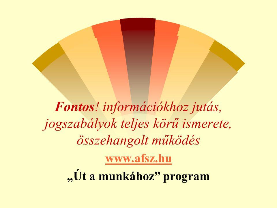 """Fontos! információkhoz jutás, jogszabályok teljes körű ismerete, összehangolt működés www.afsz.hu """"Út a munkához"""" program"""