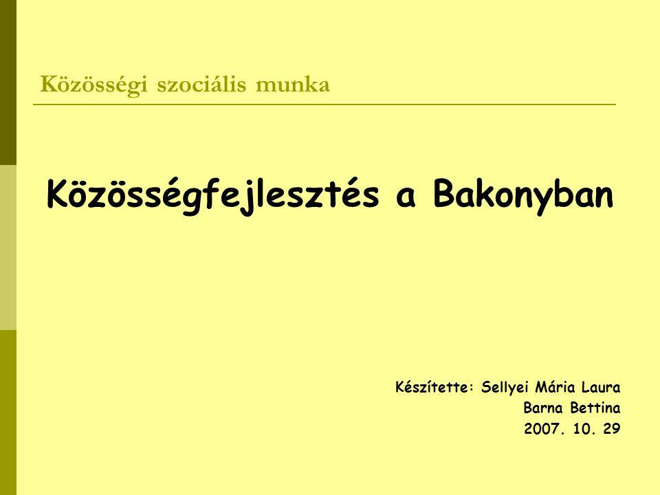 Közösségi szociális munka Közösségfejlesztés a Bakonyban Készítette: Sellyei Mária Laura Barna Bettina 2007. 10. 29
