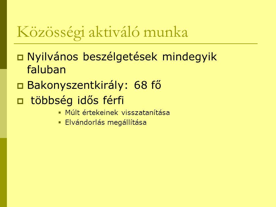Közösségi aktiváló munka  Nyilvános beszélgetések mindegyik faluban  Bakonyszentkirály: 68 fő  többség idős férfi  Múlt értekeinek visszatanítása