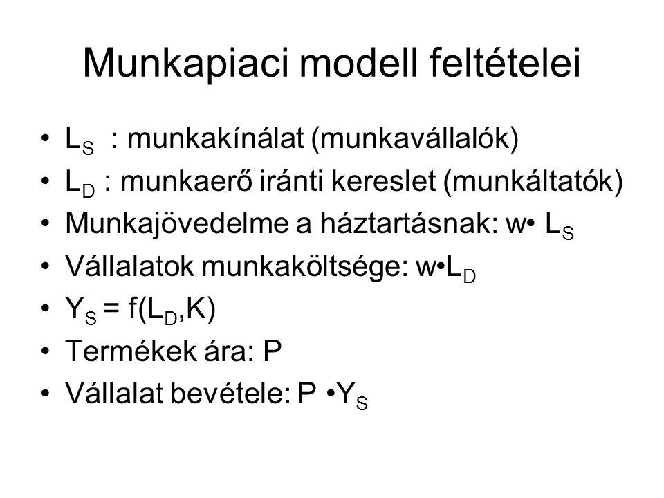 Munkapiaci modell feltételei •L S : munkakínálat (munkavállalók) •L D : munkaerő iránti kereslet (munkáltatók) •Munkajövedelme a háztartásnak: w• L S