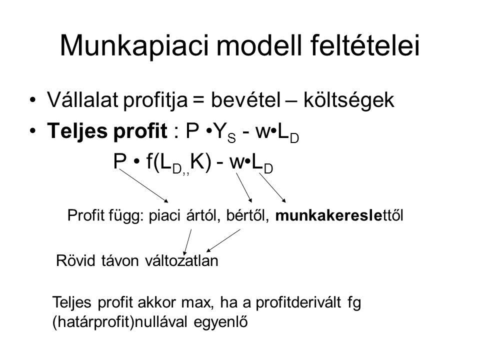 Munkapiaci modell feltételei •Vállalat profitja = bevétel – költségek •Teljes profit : P •Y S - w•L D P • f(L D,, K) - w•L D Profit függ: piaci ártól,