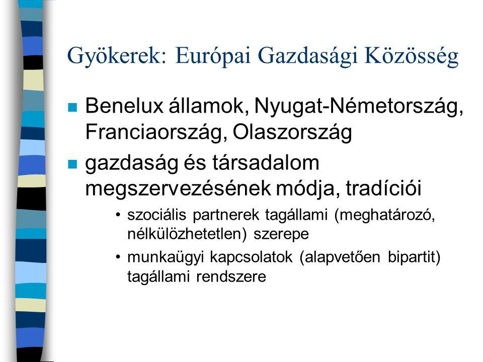 """Párhuzamos folyamatok: mélyítés és szélesítés n Mélyítés: szorosabb kapcsolat a tagállamok között; egyre több hatáskör nemzetek fölötti szintre kerül –""""hozott értékek beépítése, érvényesítése közösségi szinten •európai szociális párbeszéd"""