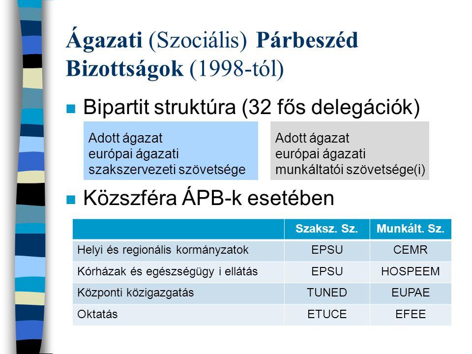 Ágazati (Szociális) Párbeszéd Bizottságok (1998-tól) n Bipartit struktúra (32 fős delegációk) n Közszféra ÁPB-k esetében Adott ágazat európai ágazati szakszervezeti szövetsége Adott ágazat európai ágazati munkáltatói szövetsége(i) Szaksz.