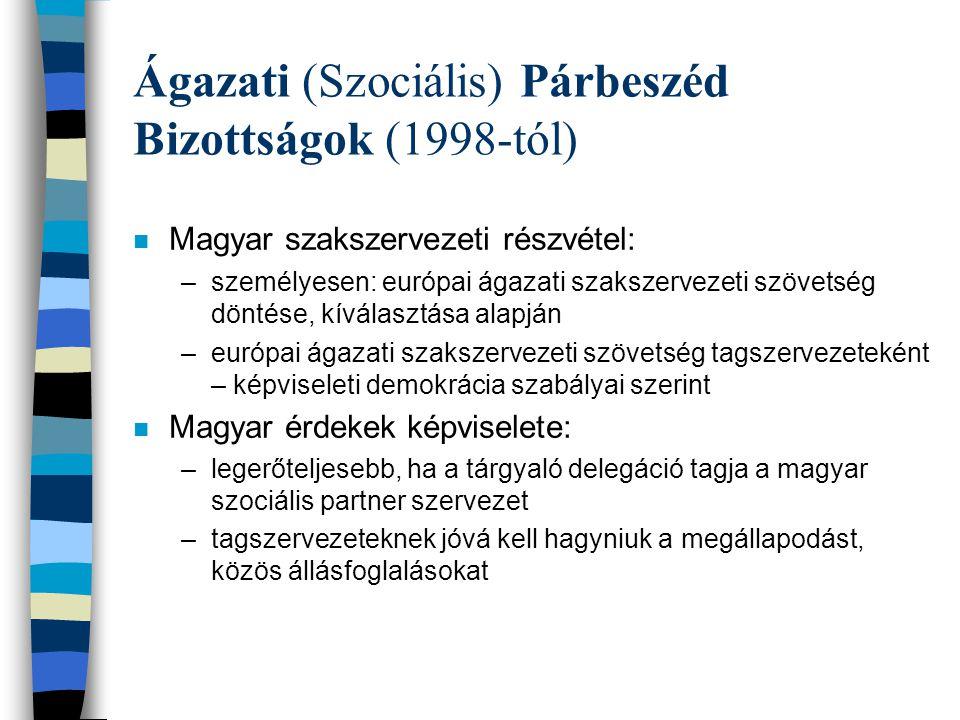 Ágazati (Szociális) Párbeszéd Bizottságok (1998-tól) n Magyar szakszervezeti részvétel: –személyesen: európai ágazati szakszervezeti szövetség döntése, kíválasztása alapján –európai ágazati szakszervezeti szövetség tagszervezeteként – képviseleti demokrácia szabályai szerint n Magyar érdekek képviselete: –legerőteljesebb, ha a tárgyaló delegáció tagja a magyar szociális partner szervezet –tagszervezeteknek jóvá kell hagyniuk a megállapodást, közös állásfoglalásokat