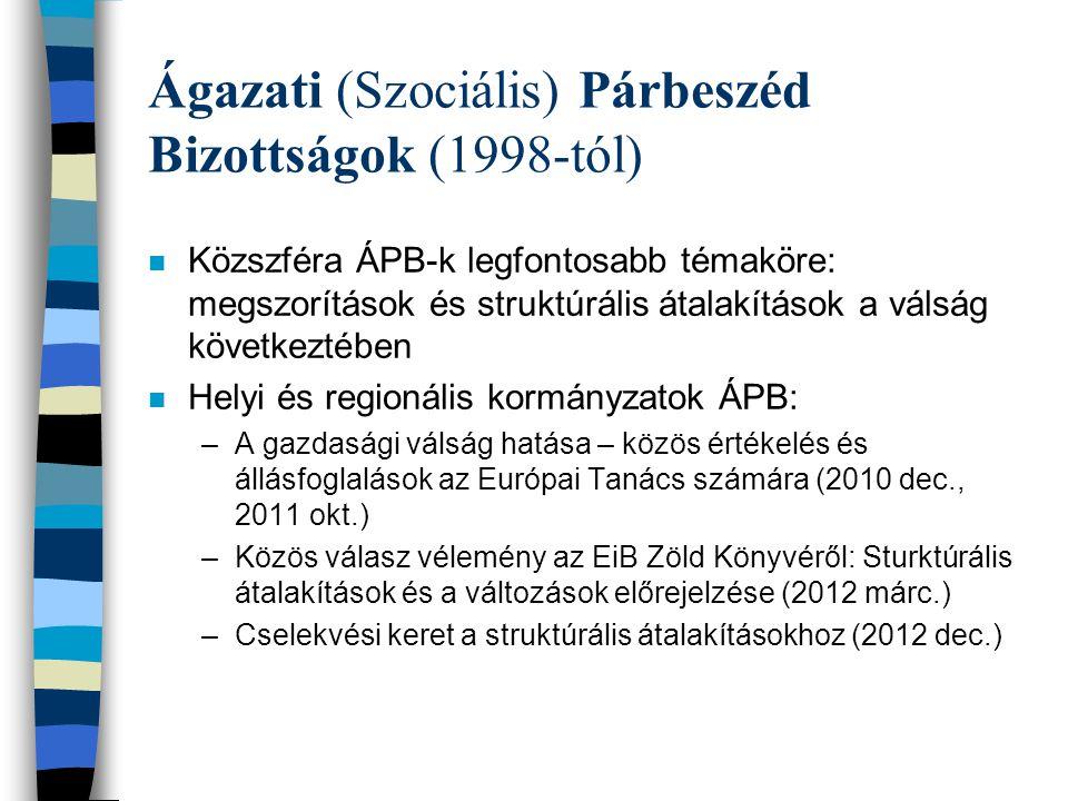 Ágazati (Szociális) Párbeszéd Bizottságok (1998-tól) n Közszféra ÁPB-k legfontosabb témaköre: megszorítások és struktúrális átalakítások a válság következtében n Helyi és regionális kormányzatok ÁPB: –A gazdasági válság hatása – közös értékelés és állásfoglalások az Európai Tanács számára (2010 dec., 2011 okt.) –Közös válasz vélemény az EiB Zöld Könyvéről: Sturktúrális átalakítások és a változások előrejelzése (2012 márc.) –Cselekvési keret a struktúrális átalakításokhoz (2012 dec.)