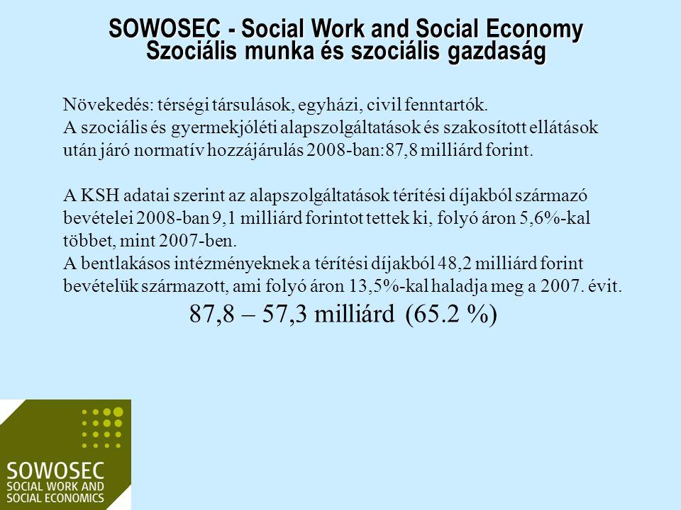 SOWOSEC - Social Work and Social Economy Szociális munka és szociális gazdaság Globálisan Egy 40 országra kiterjedő tanulmány szerint: a szektor évi 1,2 milliárd dollár forgalommal rendelkezik, 48.4 millió főállású munkavállalóval.