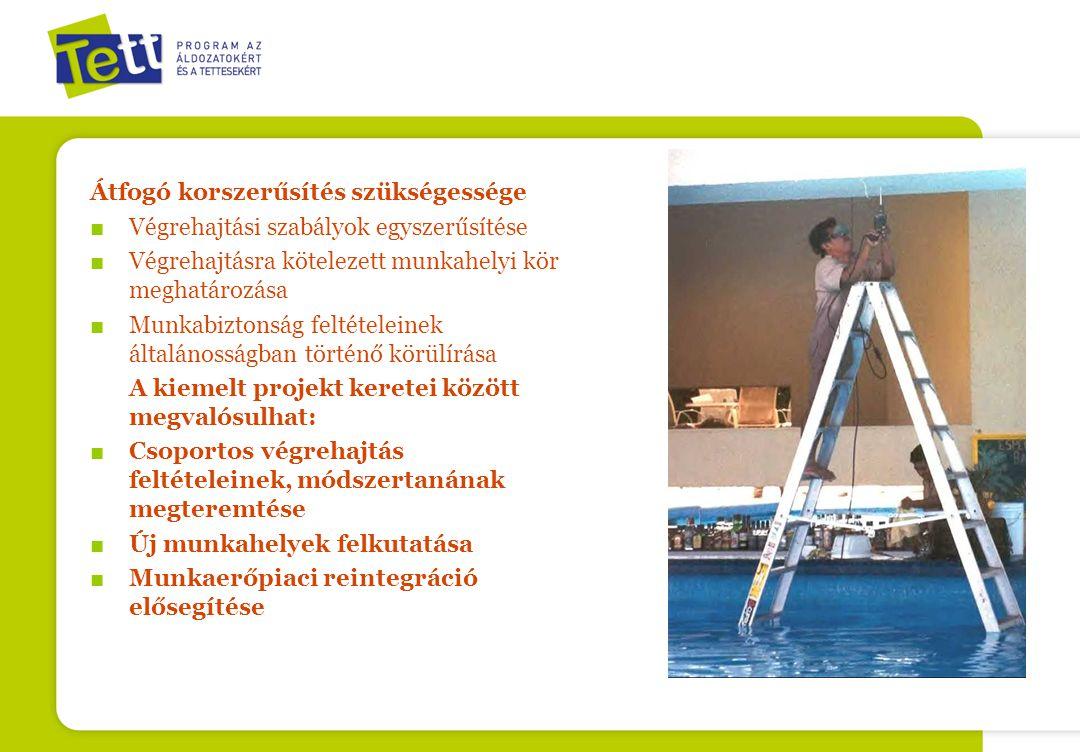 Átfogó korszerűsítés szükségessége ■ Végrehajtási szabályok egyszerűsítése ■ Végrehajtásra kötelezett munkahelyi kör meghatározása ■ Munkabiztonság feltételeinek általánosságban történő körülírása A kiemelt projekt keretei között megvalósulhat: ■ Csoportos végrehajtás feltételeinek, módszertanának megteremtése ■ Új munkahelyek felkutatása ■ Munkaerőpiaci reintegráció elősegítése