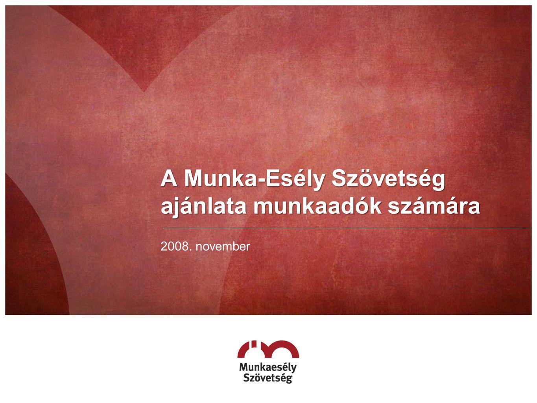 A Munka-Esély Szövetség ajánlata munkaadók számára 2008. november