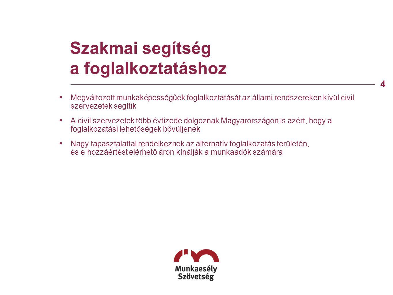 Szakmai segítség a foglalkoztatáshoz • Megváltozott munkaképességűek foglalkoztatását az állami rendszereken kívül civil szervezetek segítik • A civil szervezetek több évtizede dolgoznak Magyarországon is azért, hogy a foglalkozatási lehetőségek bővüljenek • Nagy tapasztalattal rendelkeznek az alternatív foglalkozatás területén, és e hozzáértést elérhető áron kínálják a munkaadók számára 4
