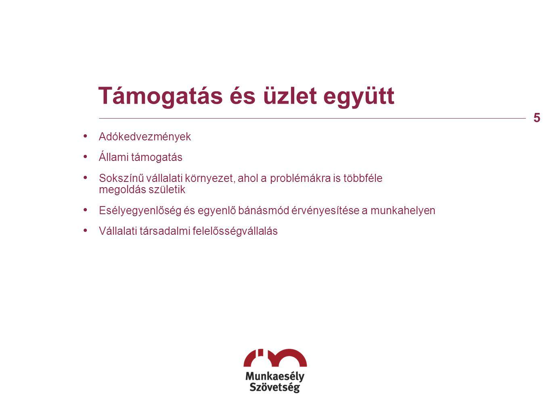 Támogatás és üzlet együtt • Adókedvezmények • Állami támogatás • Sokszínű vállalati környezet, ahol a problémákra is többféle megoldás születik • Esélyegyenlőség és egyenlő bánásmód érvényesítése a munkahelyen • Vállalati társadalmi felelősségvállalás 5
