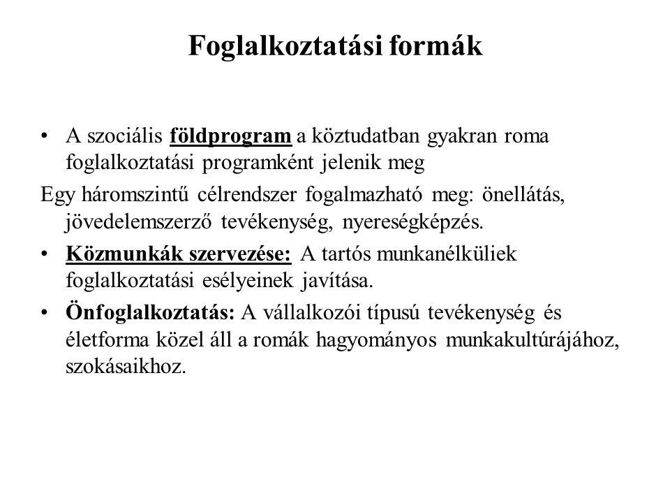 Foglalkoztatási formák •A szociális földprogram a köztudatban gyakran roma foglalkoztatási programként jelenik meg Egy háromszintű célrendszer fogalma