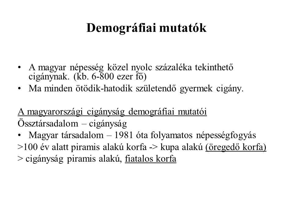 Demográfiai mutatók •A magyar népesség közel nyolc százaléka tekinthető cigánynak. (kb. 6-800 ezer fő) •Ma minden ötödik-hatodik születendő gyermek ci