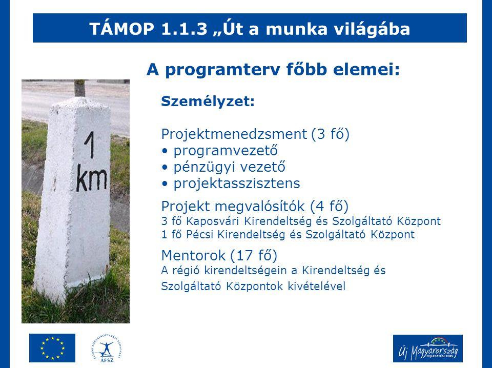 """TÁMOP 1.1.3 """"Út a munka világába A programterv főbb elemei: Személyzet: Projektmenedzsment (3 fő) • programvezető • pénzügyi vezető • projektasszisztens Projekt megvalósítók (4 fő) 3 fő Kaposvári Kirendeltség és Szolgáltató Központ 1 fő Pécsi Kirendeltség és Szolgáltató Központ Mentorok (17 fő) A régió kirendeltségein a Kirendeltség és Szolgáltató Központok kivételével"""