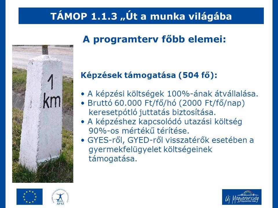 """TÁMOP 1.1.3 """"Út a munka világába Képzések támogatása (504 fő): • A képzési költségek 100%-ának átvállalása."""