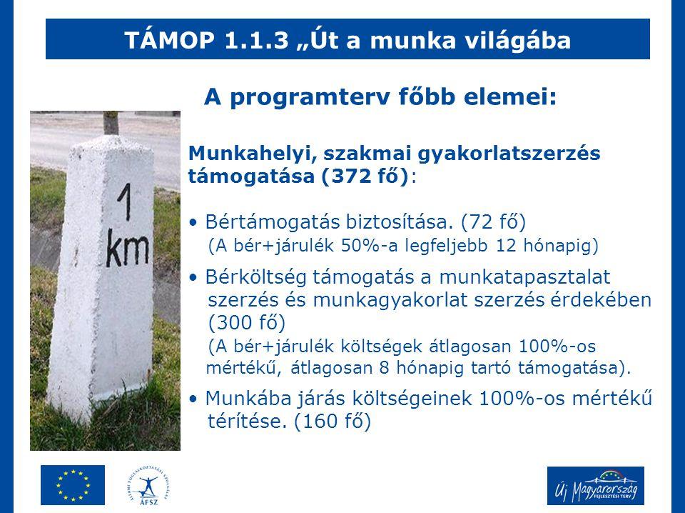 """TÁMOP 1.1.3 """"Út a munka világába Munkahelyi, szakmai gyakorlatszerzés támogatása (372 fő): • Bértámogatás biztosítása."""